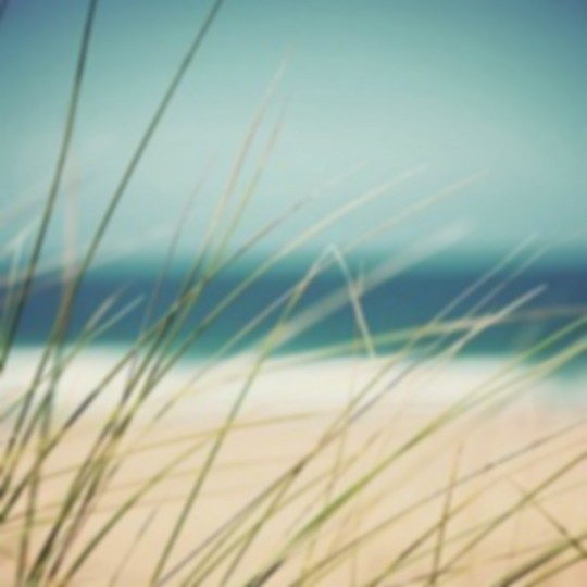 Hampton beach contact